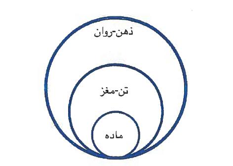 نمودار 2. نظام سلسلهمراتبی هستی از دیدگاه علمی-تکاملی.